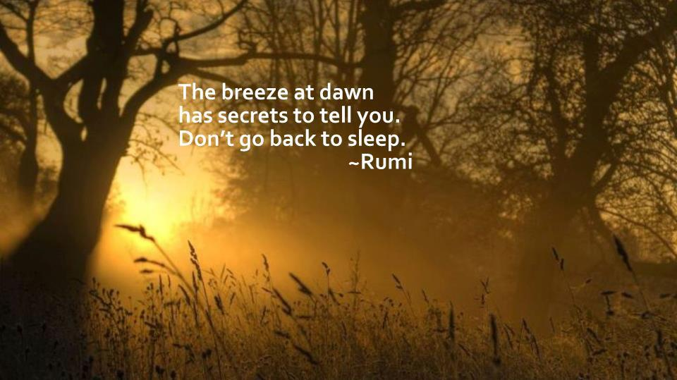 rumi share amp heal the world according to brother ian
