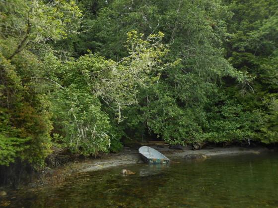 Boat, at rest, near Tofino, BC...photo by Ian Byington.